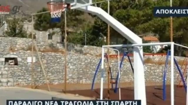 Σπάρτη: Σιδερένιο τέρμα καταπλάκωσε 10χρονο αγόρι! (Video)