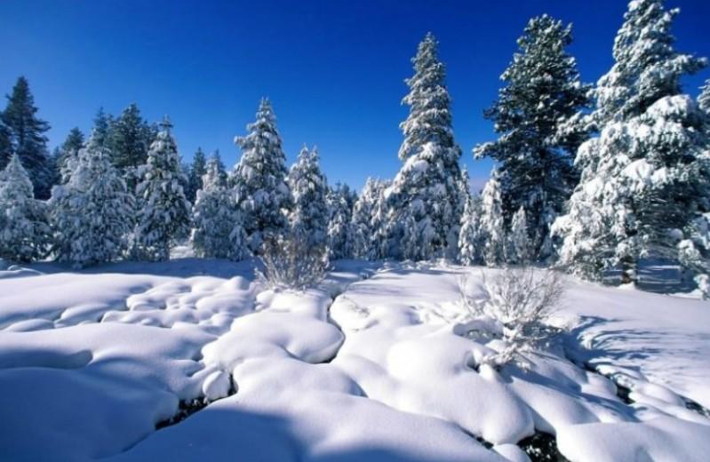 Μπείτε στο χριστουγεννιάτικο κλίμα με αυτά τα πανέμορφα χιονισμένα τοπία!