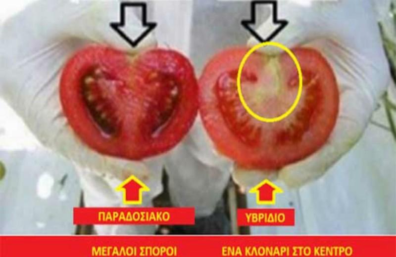 Προσοχή είναι σημαντικό- Ο πιο απλός τρόπος για να ξεχωρίσετε τα μεταλλαγμένα φρούτα από τα φυσικά