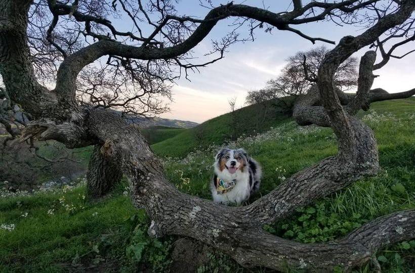Η φωτογραφία της ημέρας: Μια όμορφη μέρα στην φύση!