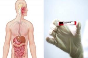"""10 τροφές """"φάρμακα"""" που προστατεύουν τον οργανισμό σου από τον κορωνοϊό - Δεν θα κολλήσεις ποτέ"""