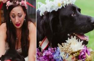 Νύφη ξέσπασε σε δάκρυα την ημέρα του γάμου της όταν ο σκύλο της...Θα σας ανατριχιάσει