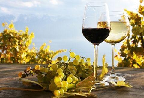 Γίνε για λίγο Ημίθεος! Στη Νεμέα φτιάχνουν το αρχαίο κρασί του Ηρακλή με τον ίδιο -παγανιστικό- τρόπο που το έκαναν πριν 2.500 χρόνια!!!