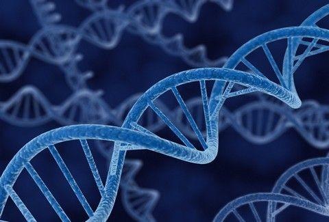 Το Ελληνικό DNA: Ένα μοναδικό φαινόμενο που ΥΠΟΚΛΙΝΕΤΑΙ ολόκληρος ο πλανήτης!!! Όλα όσα πρέπει να ξέρετε για την ταυτότητα των Ελλήνων