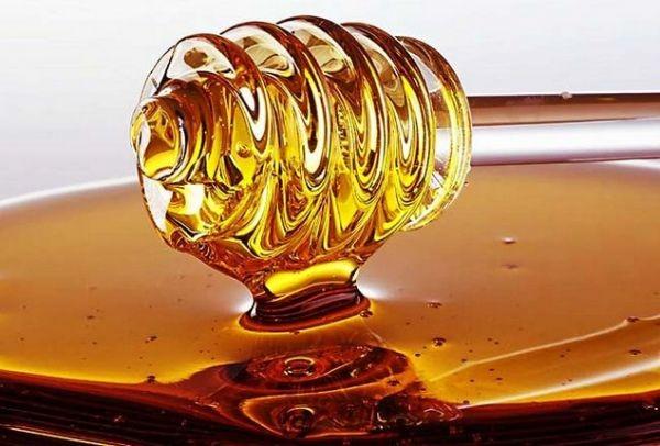 Έξω πάμε καλά: Αυτό είναι το μέλι από την Χαλκιδική που θριάμβευσε στα Όσκαρ της γεύσης!