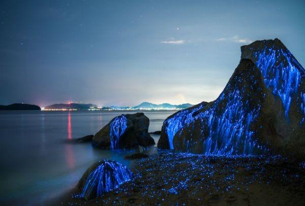 Βράχια που… φωσφορίζουν στο σκοτάδι! Οι μαγευτικές εικόνες που κάνουν τον γύρο του κόσμου...