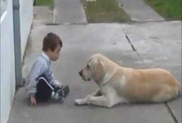 Πόση αγάπη μπορεί να δώσει ένα σκυλί σε ένα παιδί με σύνδρομο Down; Ένα video που πρέπει να δείτε!
