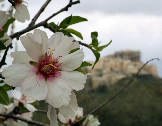 «Πάμε για ορθοπεταλιές». Δείτε τα ομορφότερα σημεία στην Αθήνα για εσάς και το... ποδήλατό σας! (Photos)