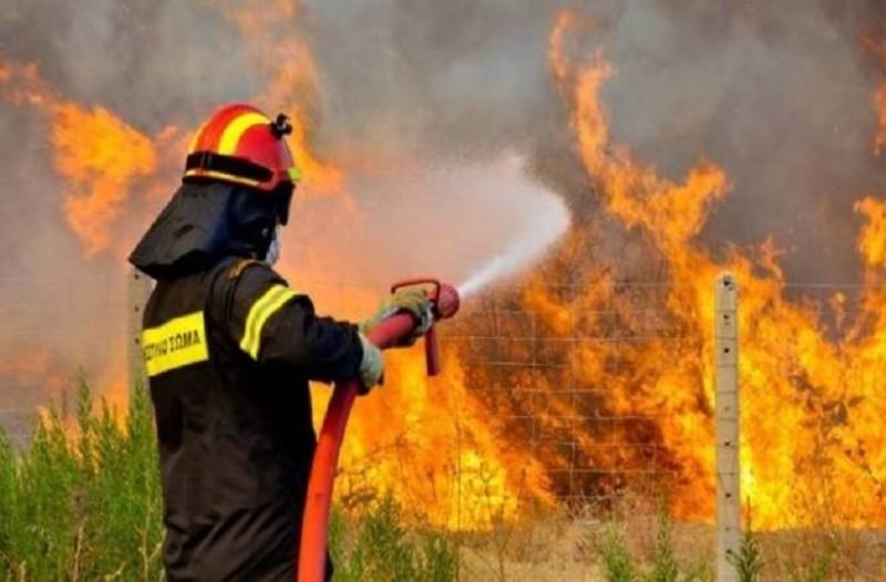Φωτιά ξέσπασε στην Ηλεία