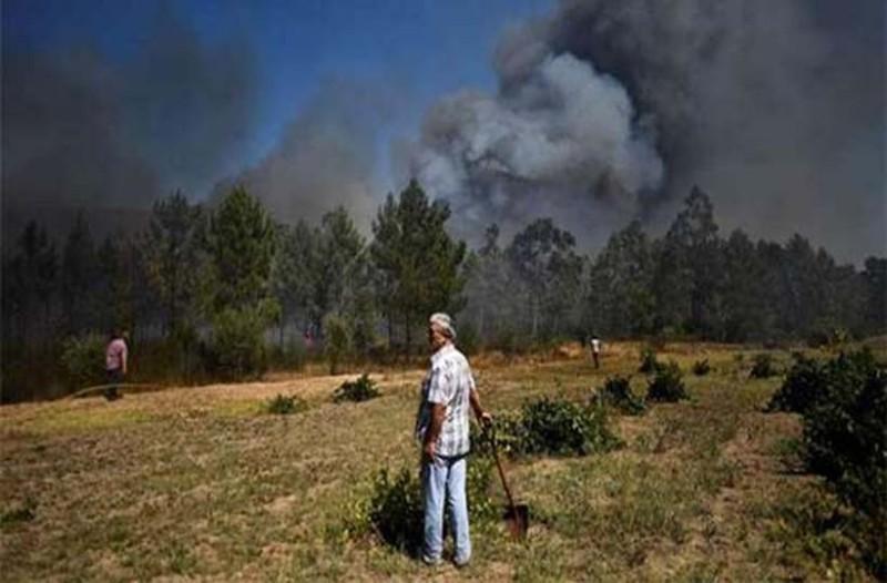 Τραγωδία στην Πορτογαλία: Συνετρίβη ελικόπτερο - Νεκρός ο χειριστής