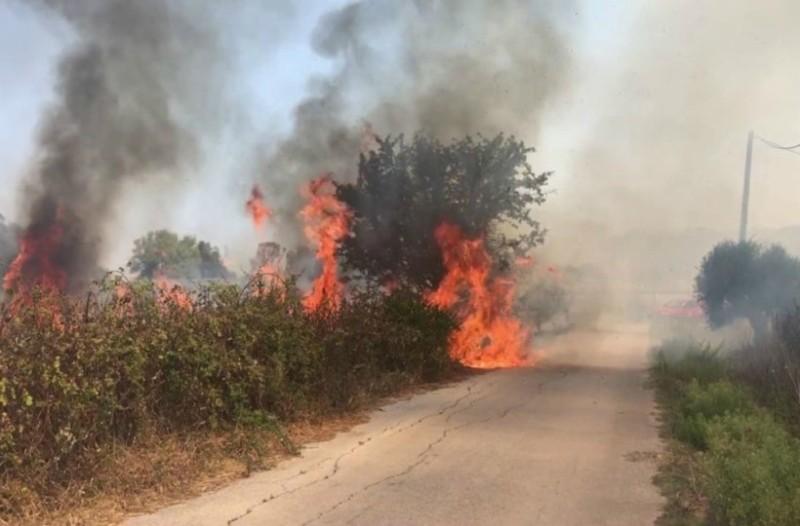 Πυρκαγιά τώρα στα Τζουμέρκα: Δύσκολο το έργο των πυροσβεστών!