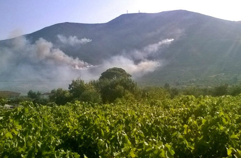 Ζάκυνθος: Μαίνεται για δεύτερη ημέρα η φωτιά! (Photos+video)