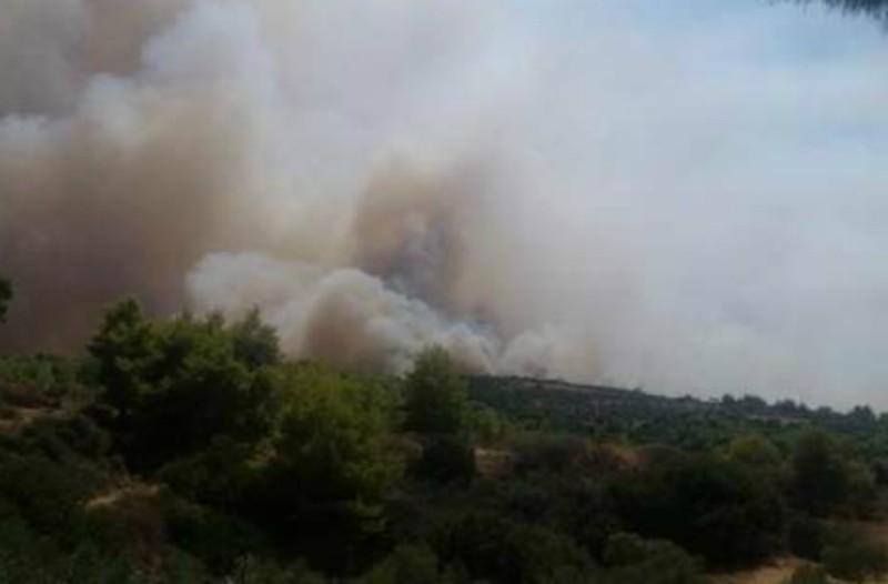 Αγρίνιο: Ξέσπασε μεγάλη πυρκαγιά (video)