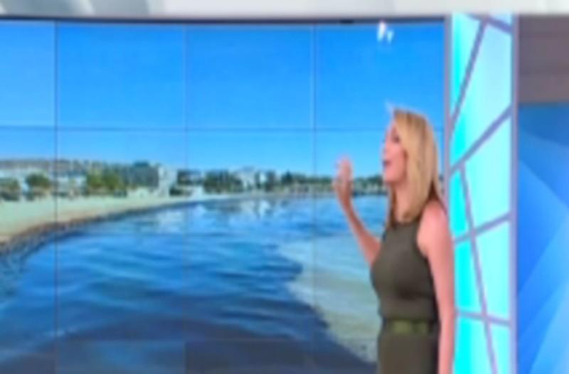 Η φωτογραφία που εξόργισε την Τατιάνα Στεφανίδου: Η σοκαριστική δημόσια καταγγελία της (video)
