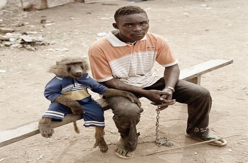Απίστευτο κι όμως αληθινό: Δείτε με τι κατοικίδια κυκλοφορούν οι άνθρωποι στην Αφρική!