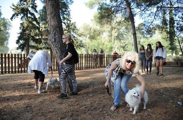 Μέρη για να βγάλεις βόλτα το σκυλί σου στην Αθήνα !