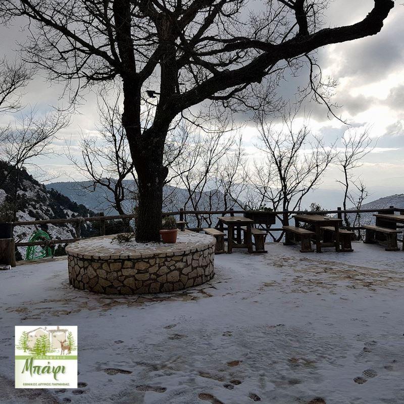 """Το """"έστρωσε"""" στην Πάρνηθα: Ο χιονιάς έκανε την εμφάνισή του και στην Αττική! Μαγευτικές εικόνες"""