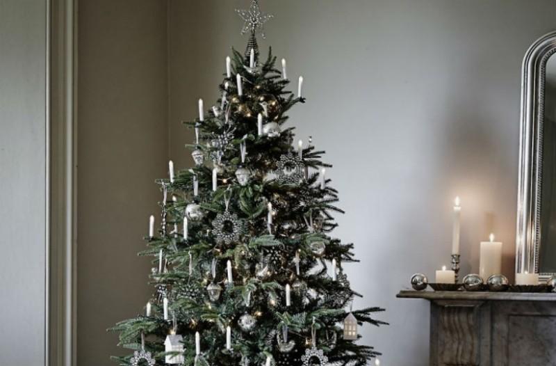 Πόσο σας επηρεάζει το «Σύνδρομο του Χριστουγεννιάτικου Δέντρου»;