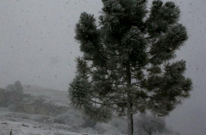 Μαθητής φόρεσε βερμούδα και κοντομάνικο στον χιονιά και έγινε Viral!