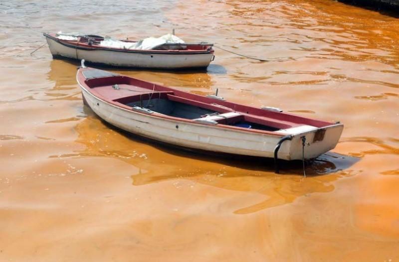 Απίστευτο θέαμα στα Λουτρά Ωραίας Ελένης – Κοκκίνισε η θάλασσα (video)