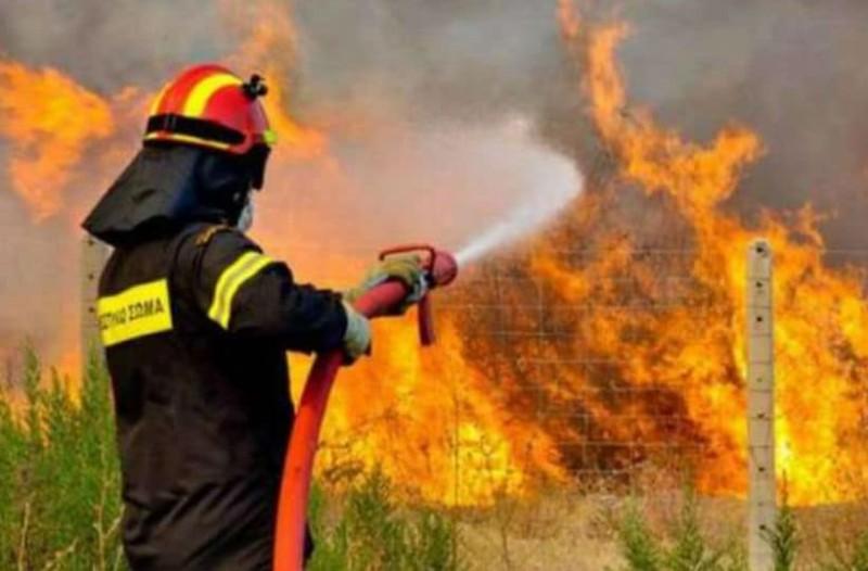 Συννελήφθη 48χρονος για τη φωτιά στην Ηλεία