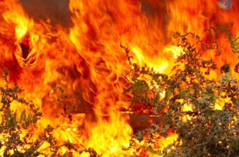 Φωτιά στη Μάνη: Συναγερμός έχει σημάνει στον οικισμό Δίχοβα