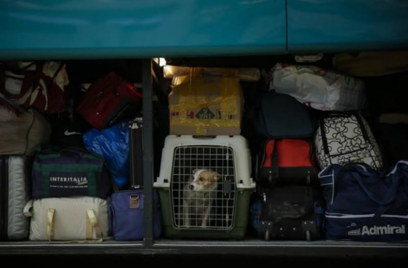 Απίστευτο περιστατικό στο Ηράκλειο: Πολιτικός παράγοντας ταξίδεψε κατά λάθος στο πορτμπαγκάζ λεωφορείου!