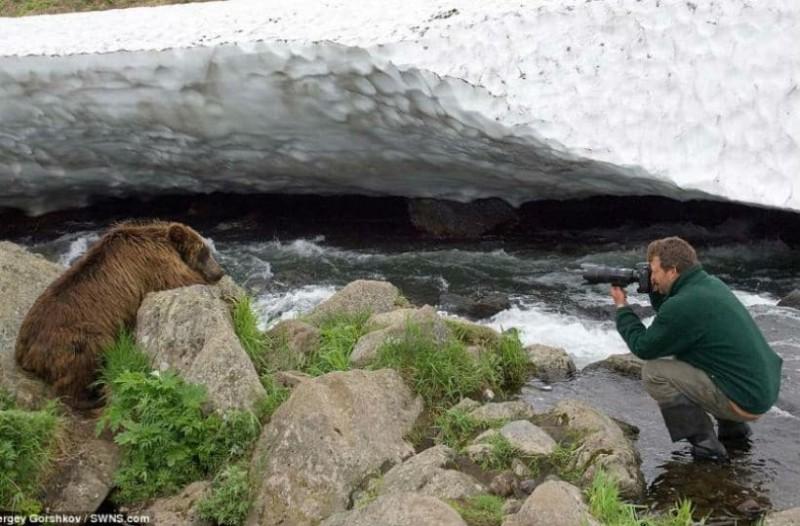 Εντυπωσιακό! Ατρόμητος φωτογράφος πλησιάζει σε απόσταση αναπνοής επικίνδυνα θηρία για ένα κλικ! (photos)