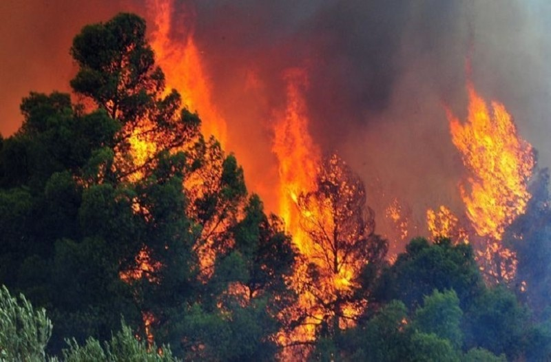 Συναγερμός στην Κρήτη: Ξέσπασε φωτιά!