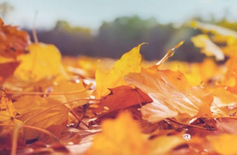 Ζώδια: Τι λένε τα άστρα για σήμερα, Πέμπτη 18 Οκτωβρίου;