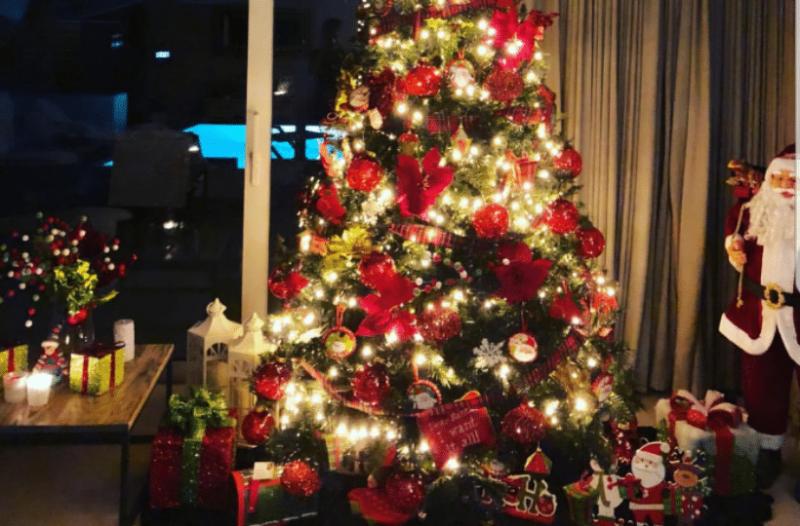 c5d79b46b4db Χριστουγεννιάτικος στολισμός  7 ιδέες για να διακοσμήσετε το δέντρο σας!