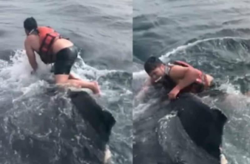 Ψαράς πήδηξε στη ράχη μίας φάλαινας και πάλεψε μέχρι να την ελευθερώσει (video)