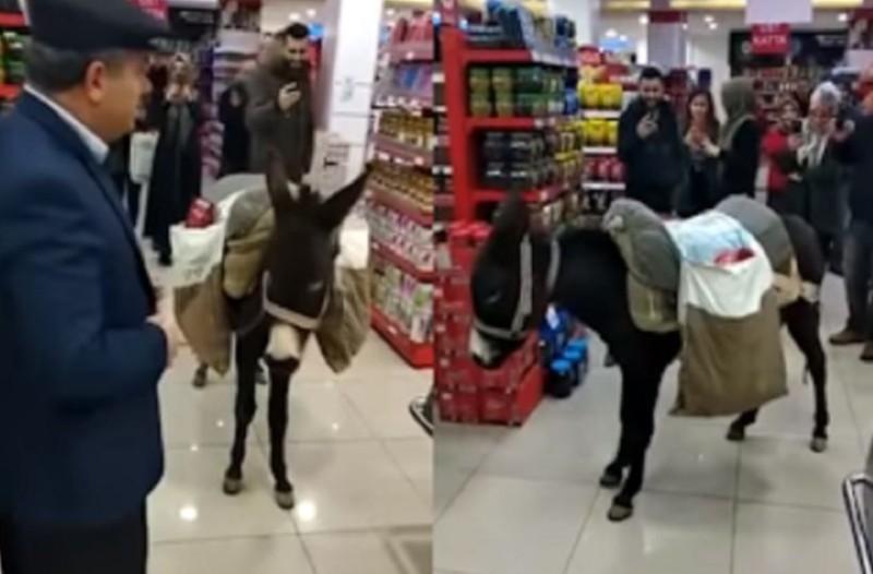 Τύπος πήγε σούπερ μάρκετ με το γαϊδούρι για να μην πληρώσει τις πλαστικές σακούλες!