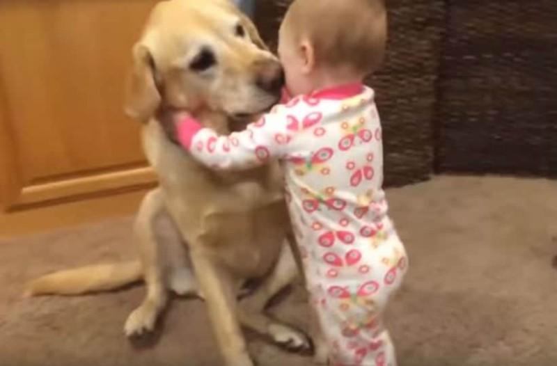 Λιώσαμε! Δείτε τα χαριτωμένα σκυλάκια να παίζουν με τα μωρά!