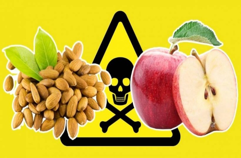 Τρόφιμα δηλητήριο στην αγορά: Σε στέλνουν στον θάνατο! Τίγκα στα φυτοφάρμακα