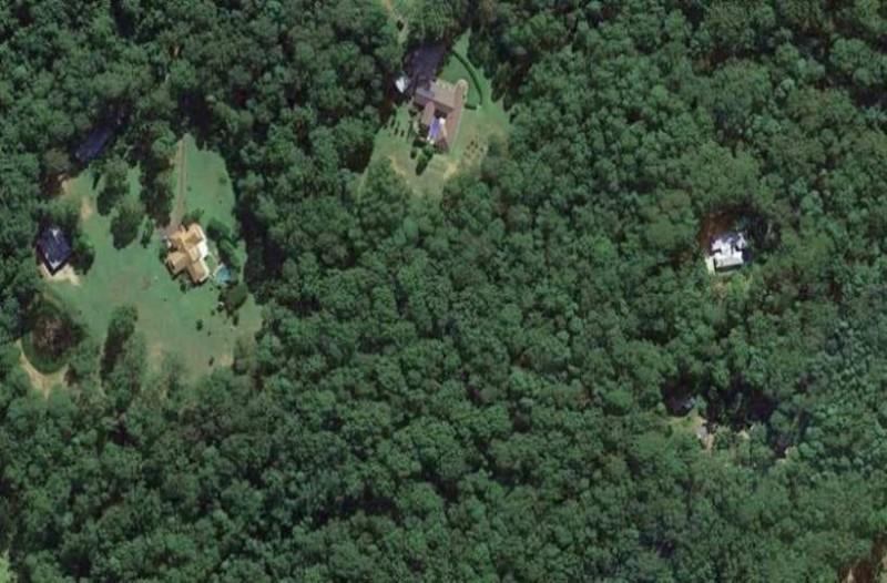 Δασικοί χάρτες: Καμπανάκι για χιλιάδες ιδιοκτήτες οι δασωμένοι αγροί!