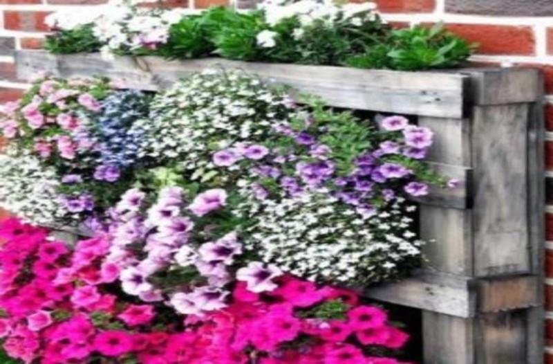 Κήπος μεταμόρφωση