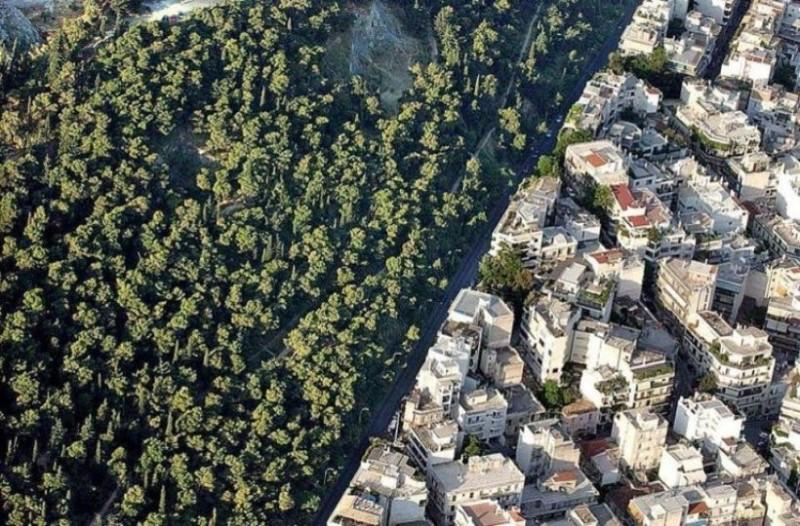Κτηματολόγιο: Επεκτείνεται η υποβολή αντιρρήσεων για τους δασικούς χάρτες!