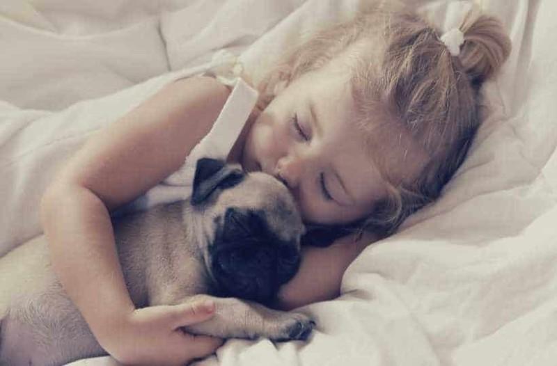 Έρευνα: Eίναι πιο καλό να κοιμάσαι δίπλα σε ένα σκύλο παρά σε έναν άντρα!