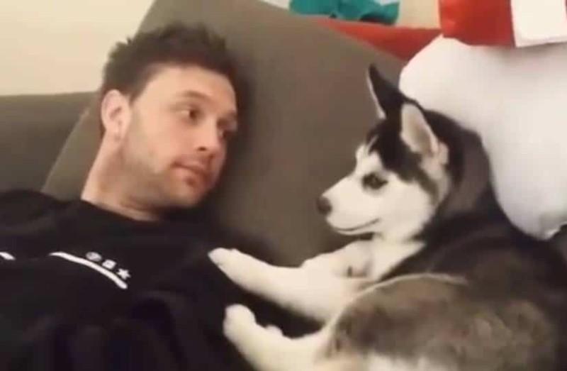 Θα κλάψετε από τα γέλια: Είπε στο σκύλο του να σταματήσει και...