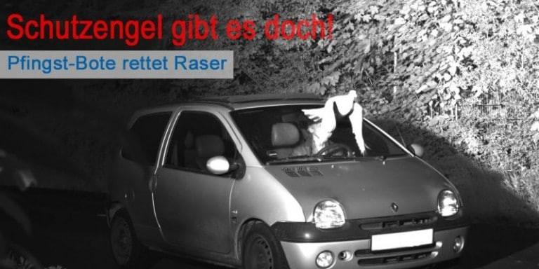 Απίστευτο: Περιστέρι γλιτώνει οδηγό που θα πλήρωνε κλήση 105 ευρώ!