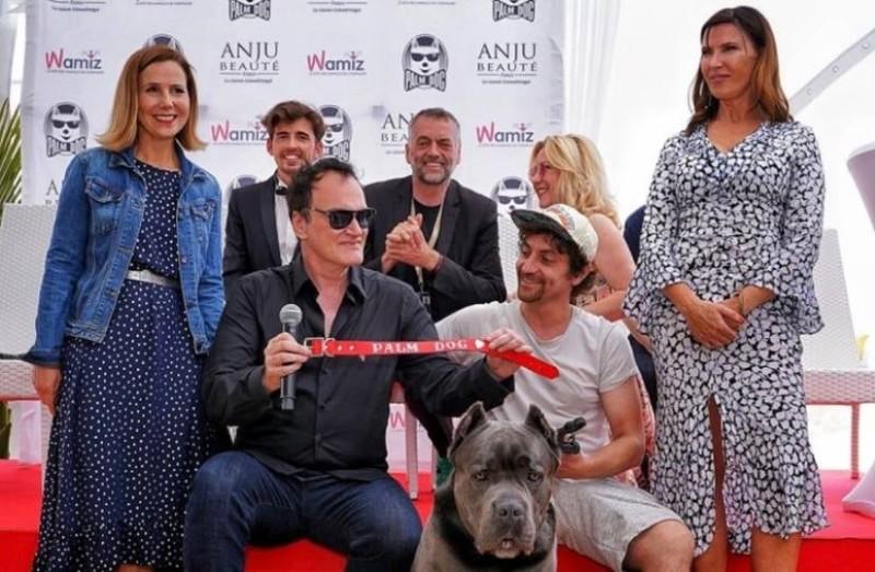 Φεστιβάλ Καννών: Βραβείο πήρε...μια σκυλίτσα!