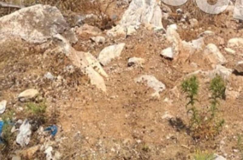 Εύβοια: Τι είπε ο άντρας που βρήκε τον ανθρώπινο σκελετό;