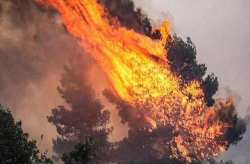 Φωτιά στην Λευκάδα! Καίγεται δασική περιοχή!