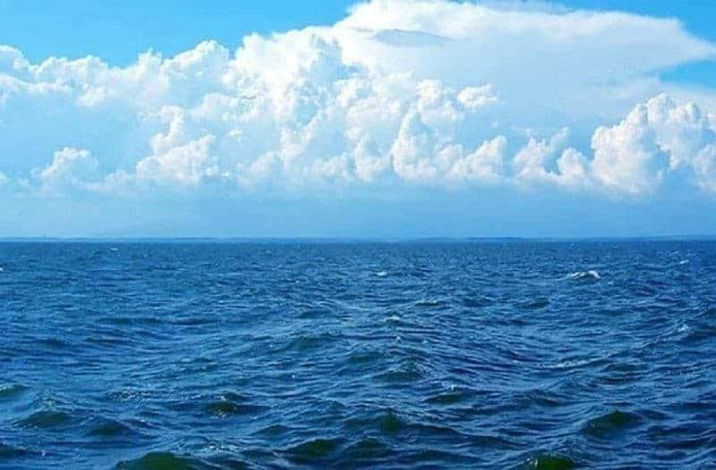 Θάλασσα βακτήρια