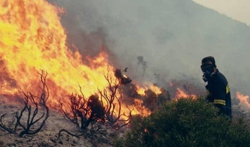 Συναγερμός: Yψηλός κίνδυνος πυρκαγιάς σε Αττική και Εύβοια!