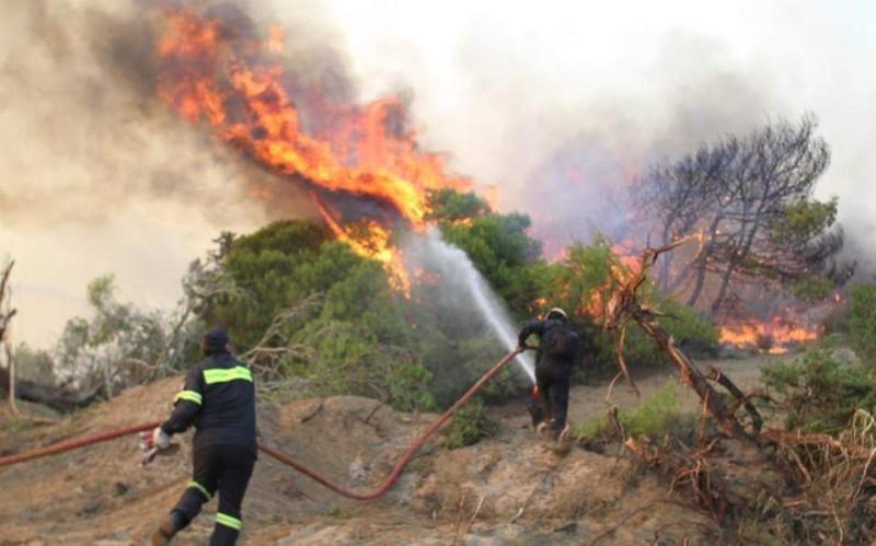 Πυρκαγία στη Χαλκιδική!