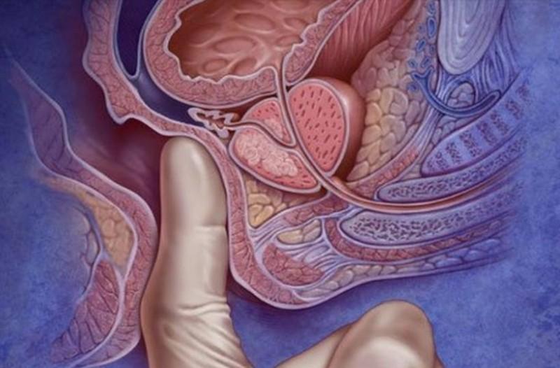 Πρωκτικό σeξ: Πόσο βαθιά πρέπει να μπαίνει το πέος και πότε μπορεί να σου βγει το έντερο έξω;