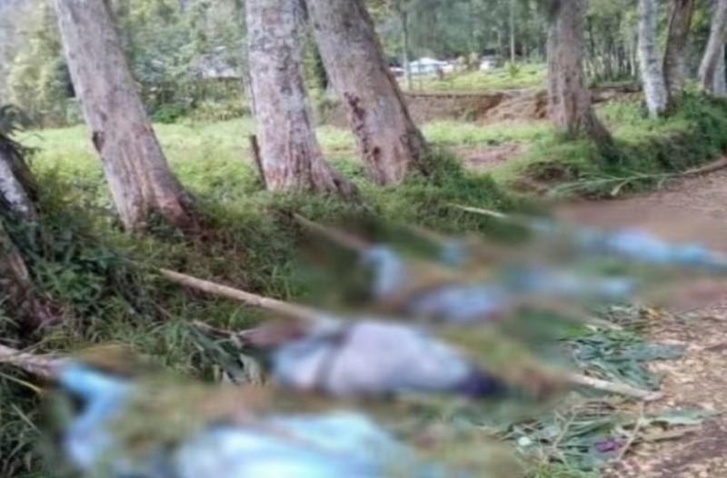 Φρίκη:  Mαχαίρωσαν μέχρι θανάτου παιδιά και εγκύους!