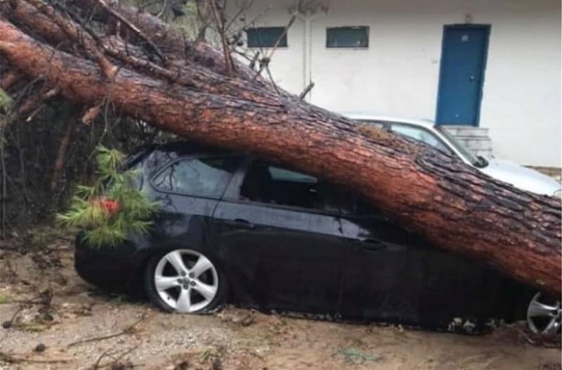 Η φωτογραφία της ημέρας: Εικόνες καταστροφής στην Χαλκιδική!